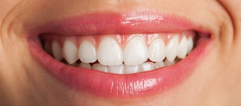 para-que-sirve-cada-pieza-dental